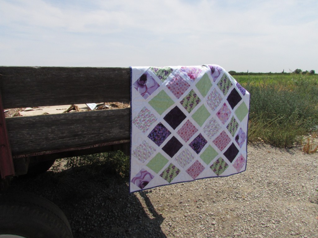 Sugar & Spice & Everything Nice Baby Girl Quilt July 2014